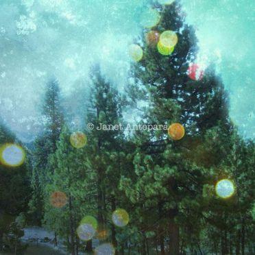 Wonderful winter wonderland decoration ideas 38