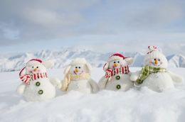 Wonderful winter wonderland decoration ideas 39