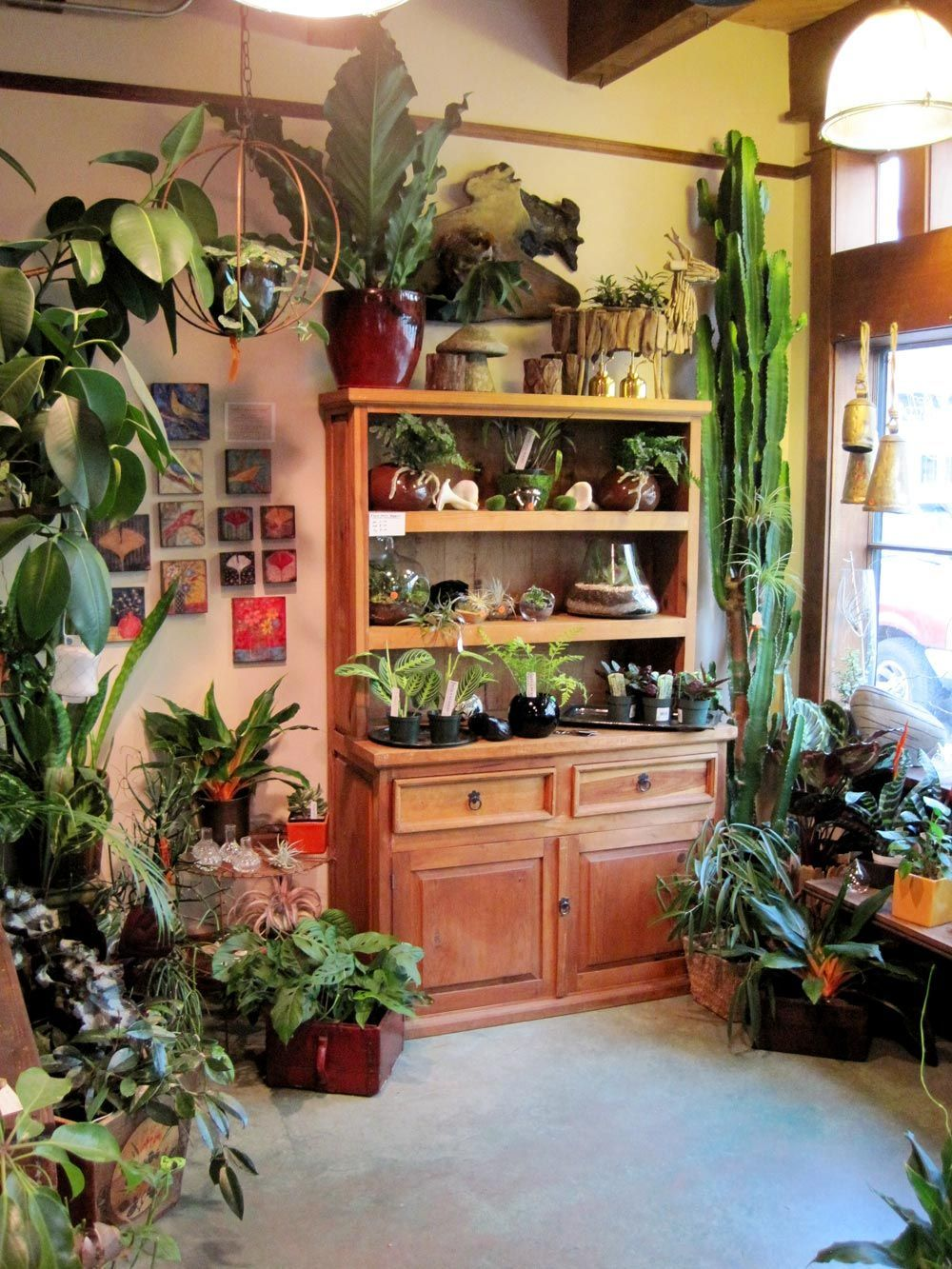Cozy house plants decoration ideas for indoor 53