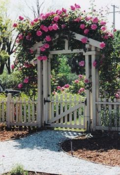 Comfy green country backyard remodel ideas 49