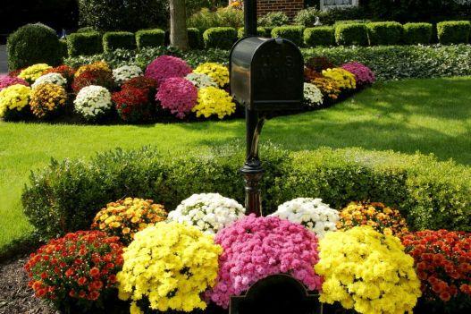 Stunning landscape pathways ideas for your garden 13