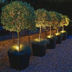 Stunning landscape pathways ideas for your garden 44