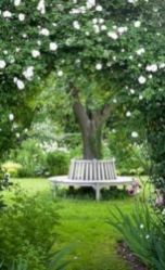 Amazing garden decor ideas 43