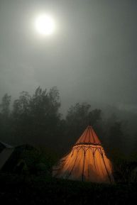 Best ideas to free praise in nature camping 15