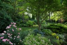 Charming flower beds ideas for shady yards 03
