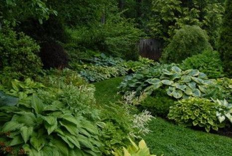 Charming flower beds ideas for shady yards 07