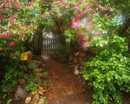Charming flower beds ideas for shady yards 24