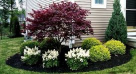 Charming flower beds ideas for shady yards 36