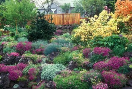 Charming flower beds ideas for shady yards 43