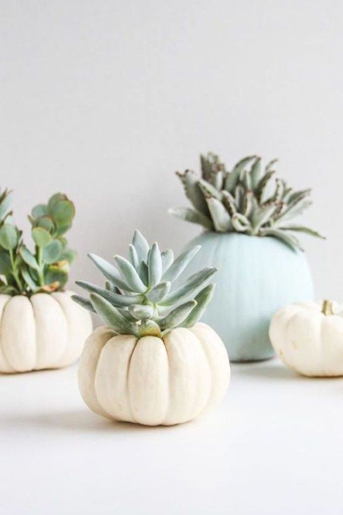 Modern diy thanksgiving decorations ideas for home 34