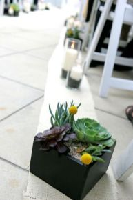 Popular air plant display ideas for home 40