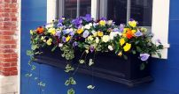 Attractive window box planter ideas to beautify up your home 11