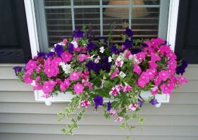 Attractive window box planter ideas to beautify up your home 19