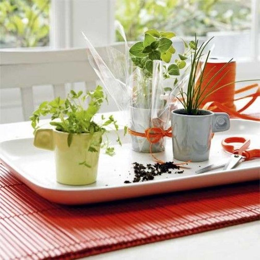 Impressive mini garden mug ideas to add beauty on your home 04