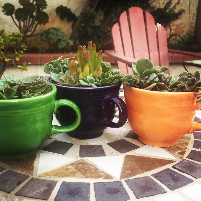 Impressive mini garden mug ideas to add beauty on your home 09