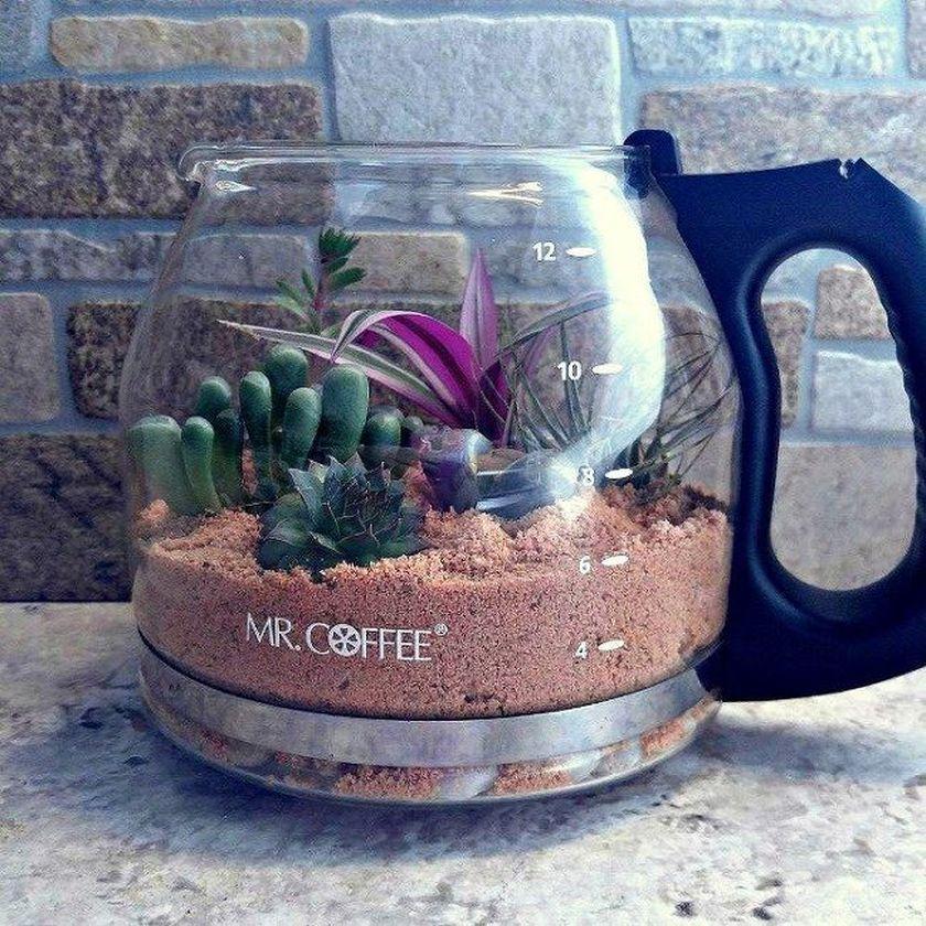 Impressive mini garden mug ideas to add beauty on your home 13