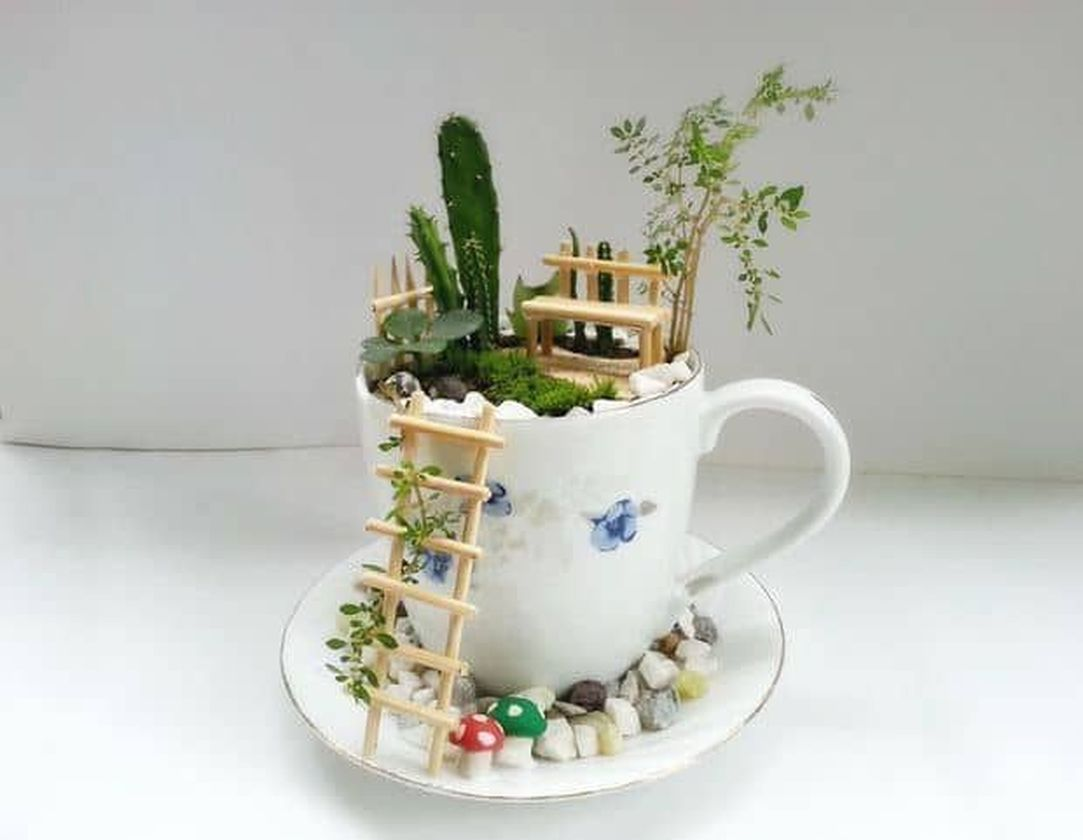 Impressive mini garden mug ideas to add beauty on your home 28
