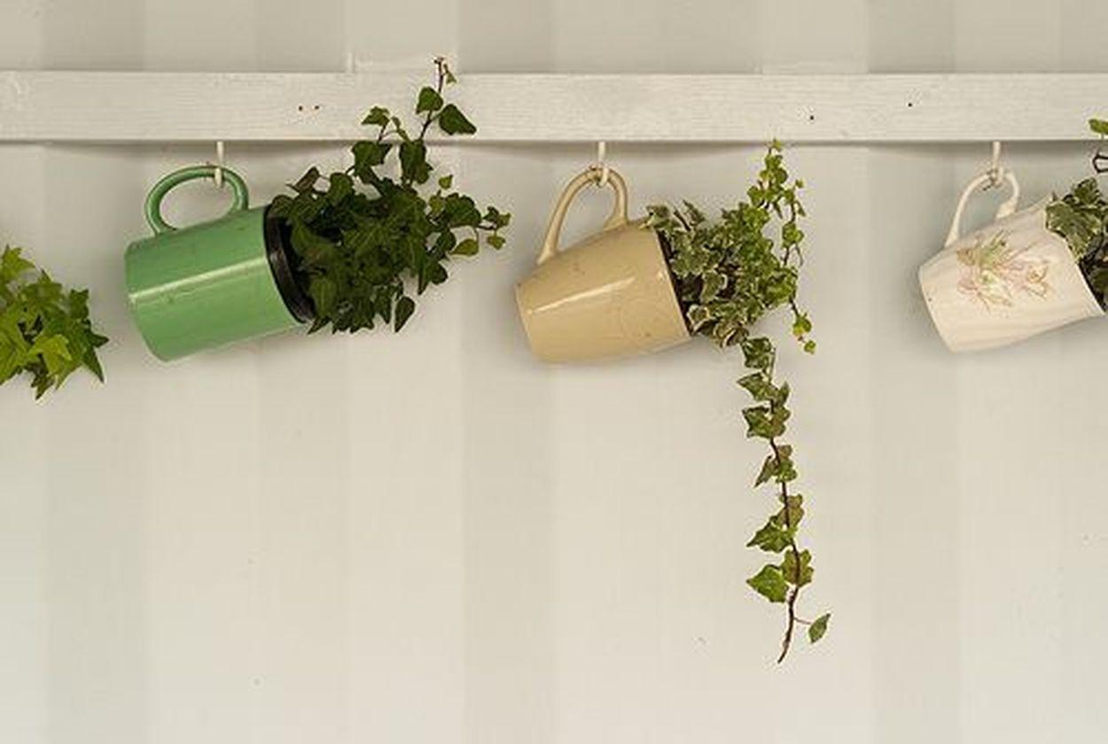 Impressive mini garden mug ideas to add beauty on your home 29