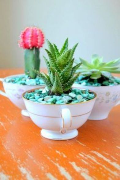 Impressive mini garden mug ideas to add beauty on your home 38