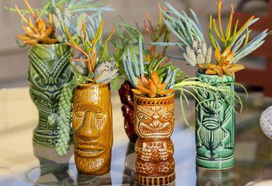 Impressive mini garden mug ideas to add beauty on your home 48
