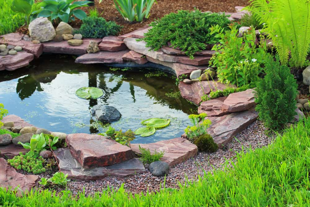 15 Beautiful Small Backyard Pond Ideas
