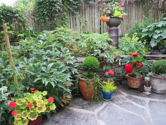 Small Garden Ideas for The Limited Outdoor Space