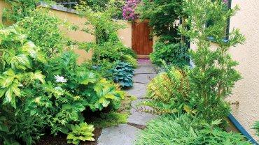 Garden-after-portland-0311