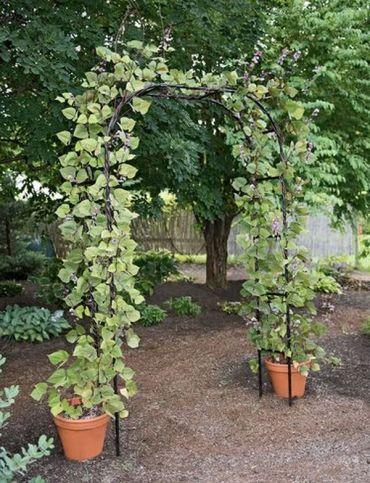Garden-arches-ideas17