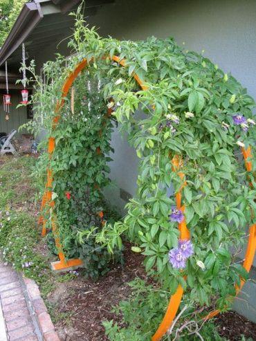 Garden-arches-ideas23
