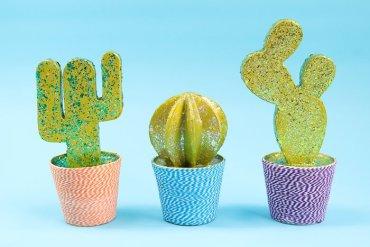 Diy-cactus-7-of-11
