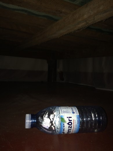 James tooth under bed
