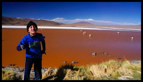 The Red Lagoon and flamingos