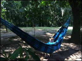 Hanging in the Hammock