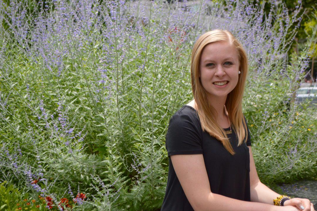 City Garden St Louis Missouri Travel