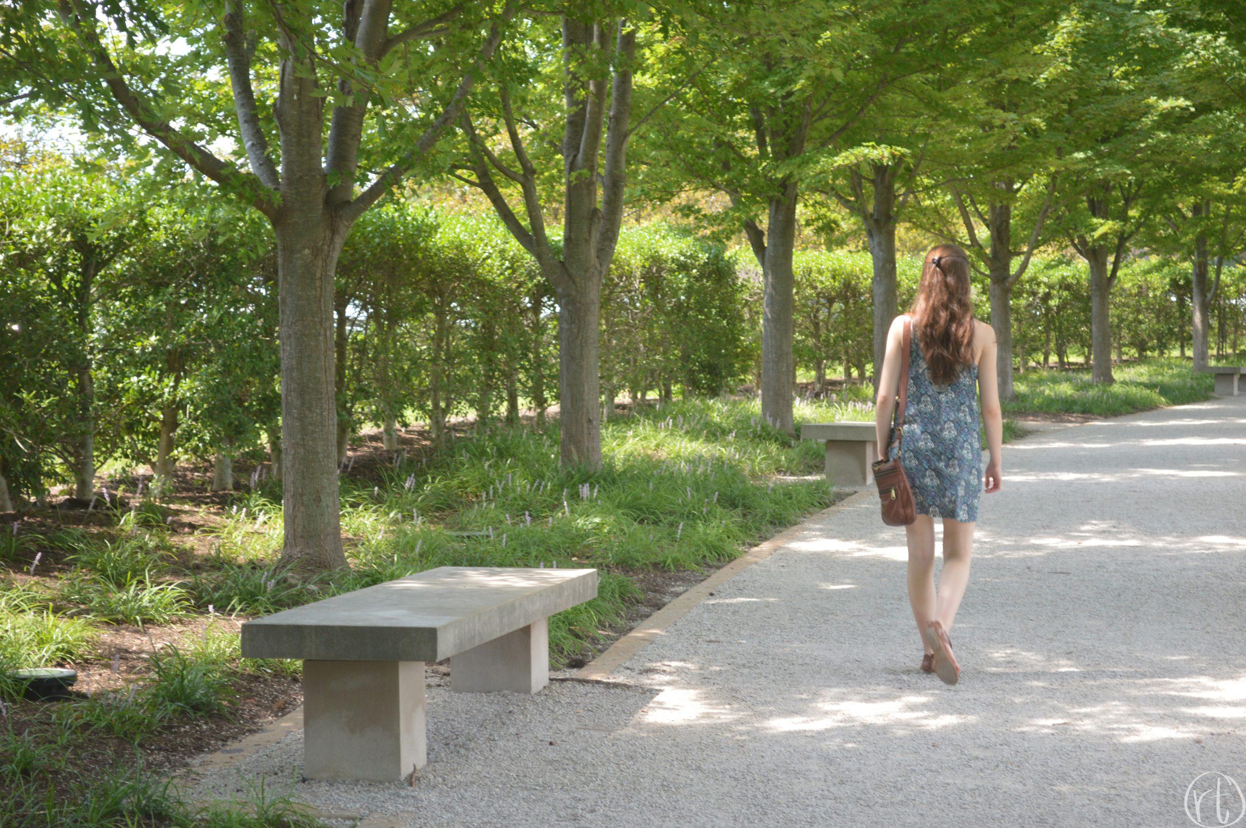 forest-park-st-louis-art-museum-travel