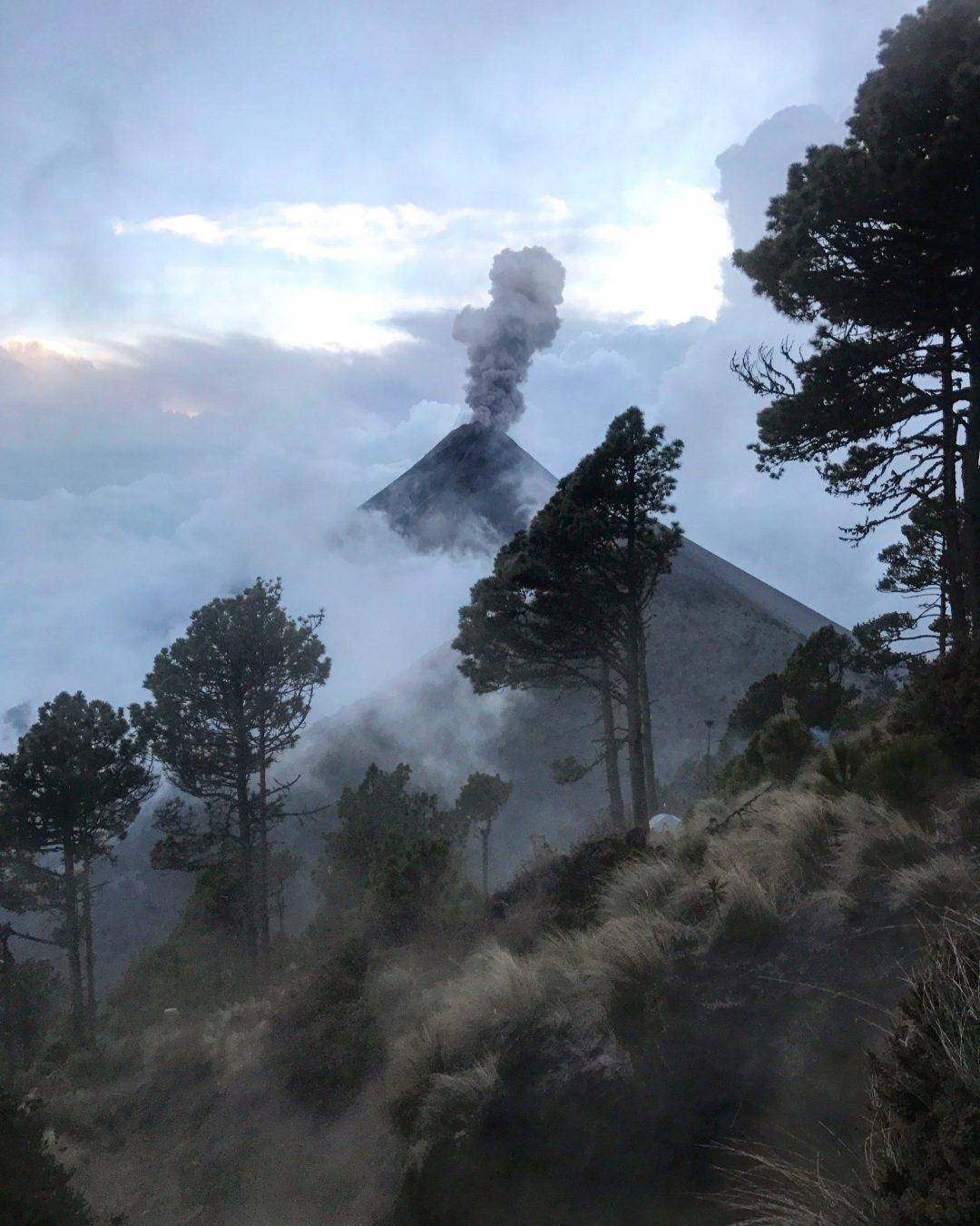 Guatemala World Race Gap Year Forest