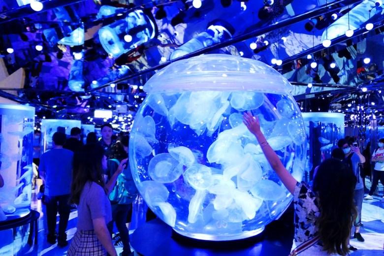 超大水母球 | 網美熱門拍照景點 | Xpark | Zone 8 | Taiwan | RoundtripJp