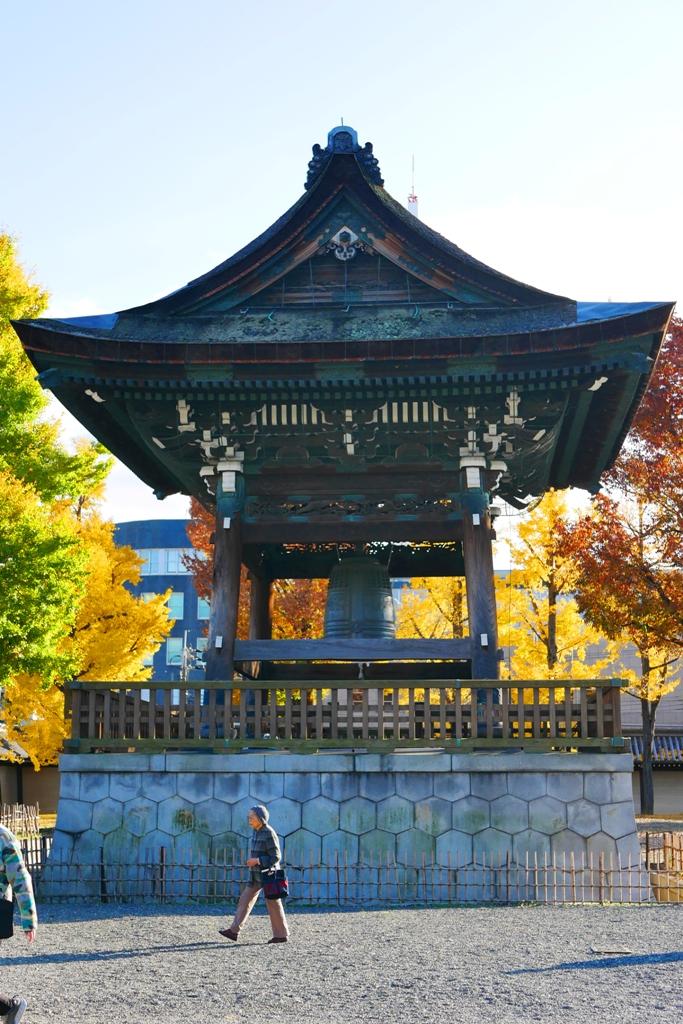 Ginkgo Biloba | ひがしほんがんじ | 東本願寺 | Kyoto | Kansai | Japan | RoundtripJp