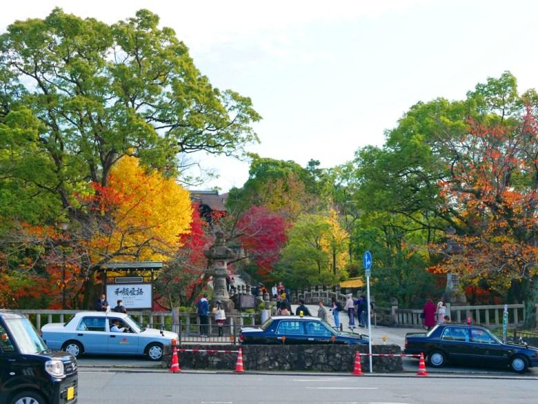 Ginkgo Biloba | えんつうきょう | 大谷本廟 円通橋 | Kyoto | Kansai | Japan | RoundtripJp
