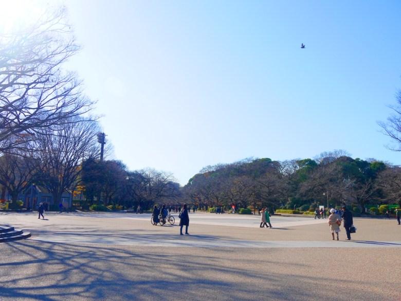 上野恩賜公園 | Ueno | Tokyo | Japan | RoundtripJp