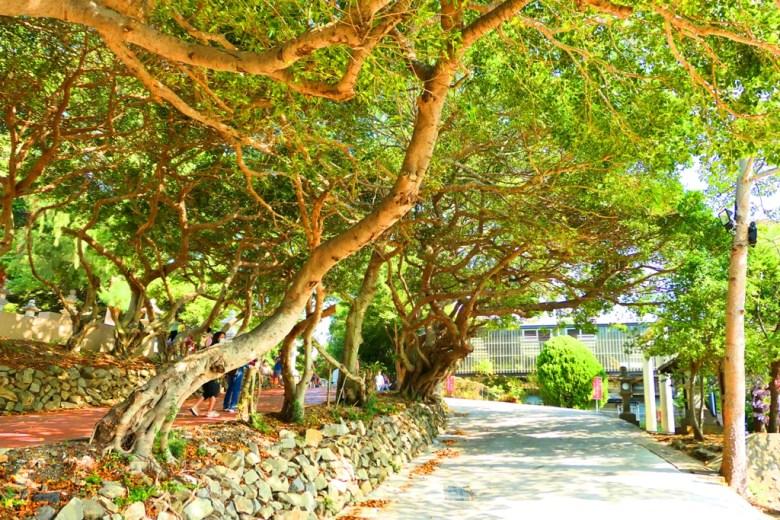 綠色隧道 | 虎頭山公園 | Tongxiao | 苗栗 | 臺灣 | 和風臺灣 | 巡日旅行攝