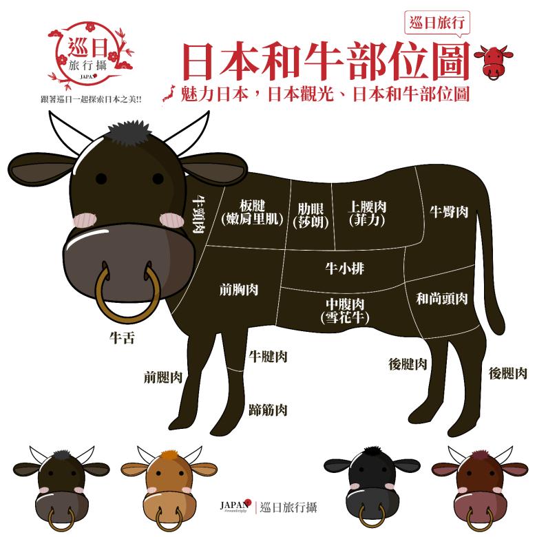 日本和牛常見部位 | Wagyu | わぎゅう | 日本 | Japan | 巡日旅行攝