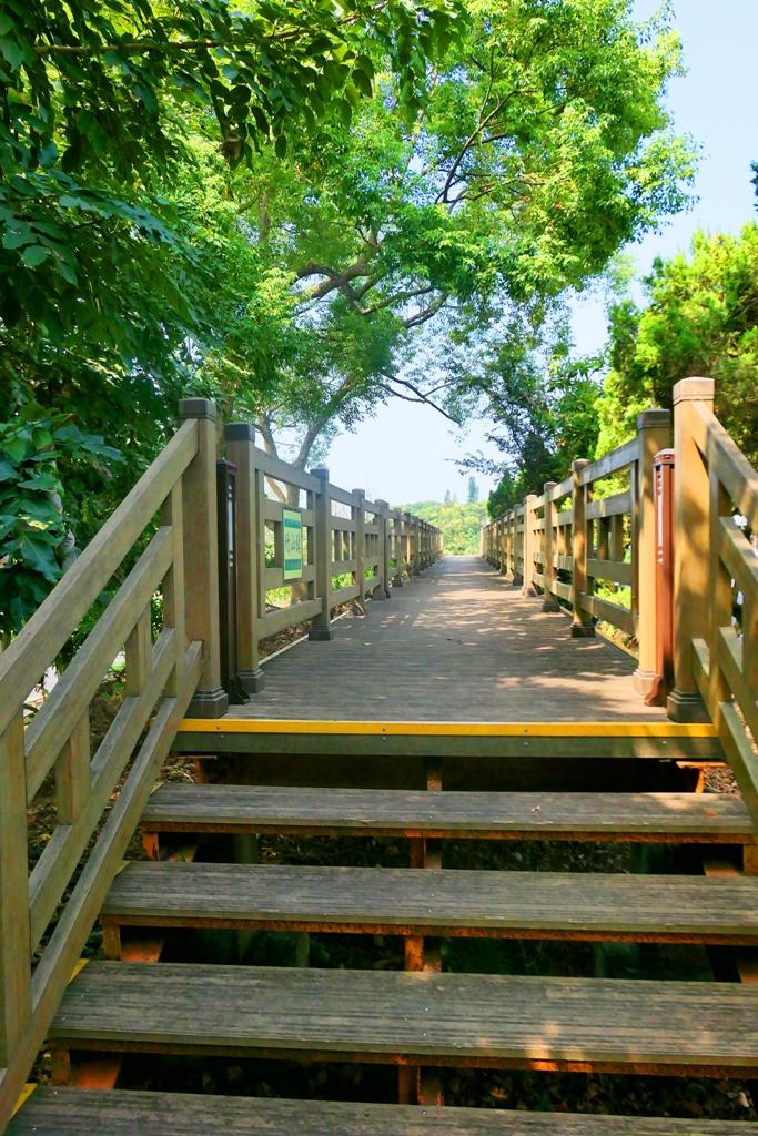 綠樹木棧道 | 人行步道 | 竹山 | 南投 | 臺灣 | 一抹和風 | 巡日旅行攝