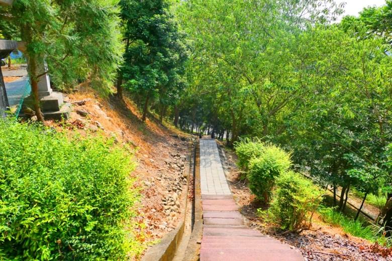 感受森林的自然清新 | 竹山公園 | Takeyama Shrine | Zhushan | Nantou | RoundtripJp