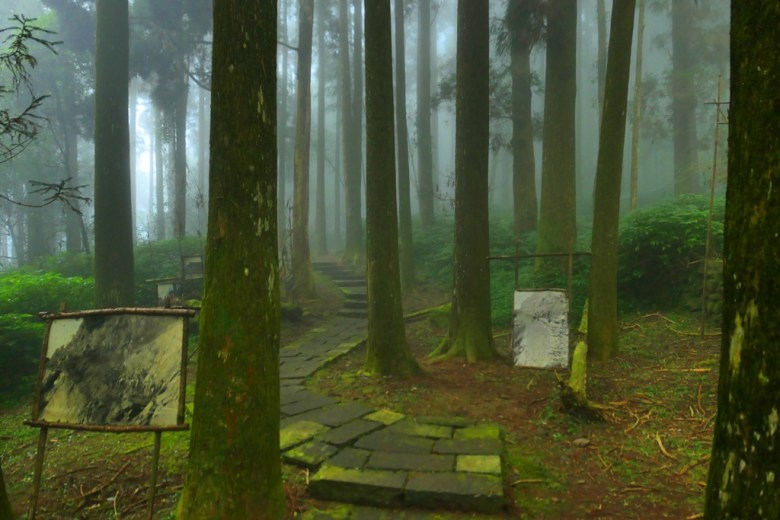 樹海步道 | 雲霧繚繞 | 往左鹿鼎巨木方向 | 奮起湖步道 | 嘉義 | 臺灣 | 巡日旅行攝