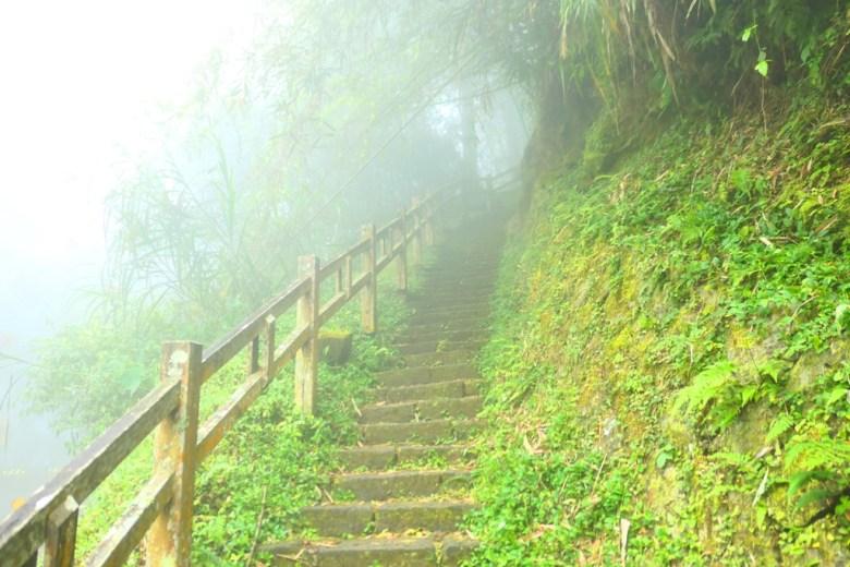 奮起步道入口處 | 往奮起湖神社遺跡 | 阿里山公路中和支線/169縣道旁 | Mt.ali | Chiayi | Taiwan | RoundtripJp
