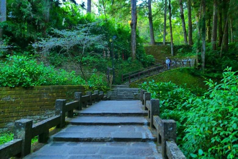 綠意盎然 | 古木與古橋 | 香林橋 | 往阿里山神社遺址 | Chiayi | Taiwan | RoundtripJp