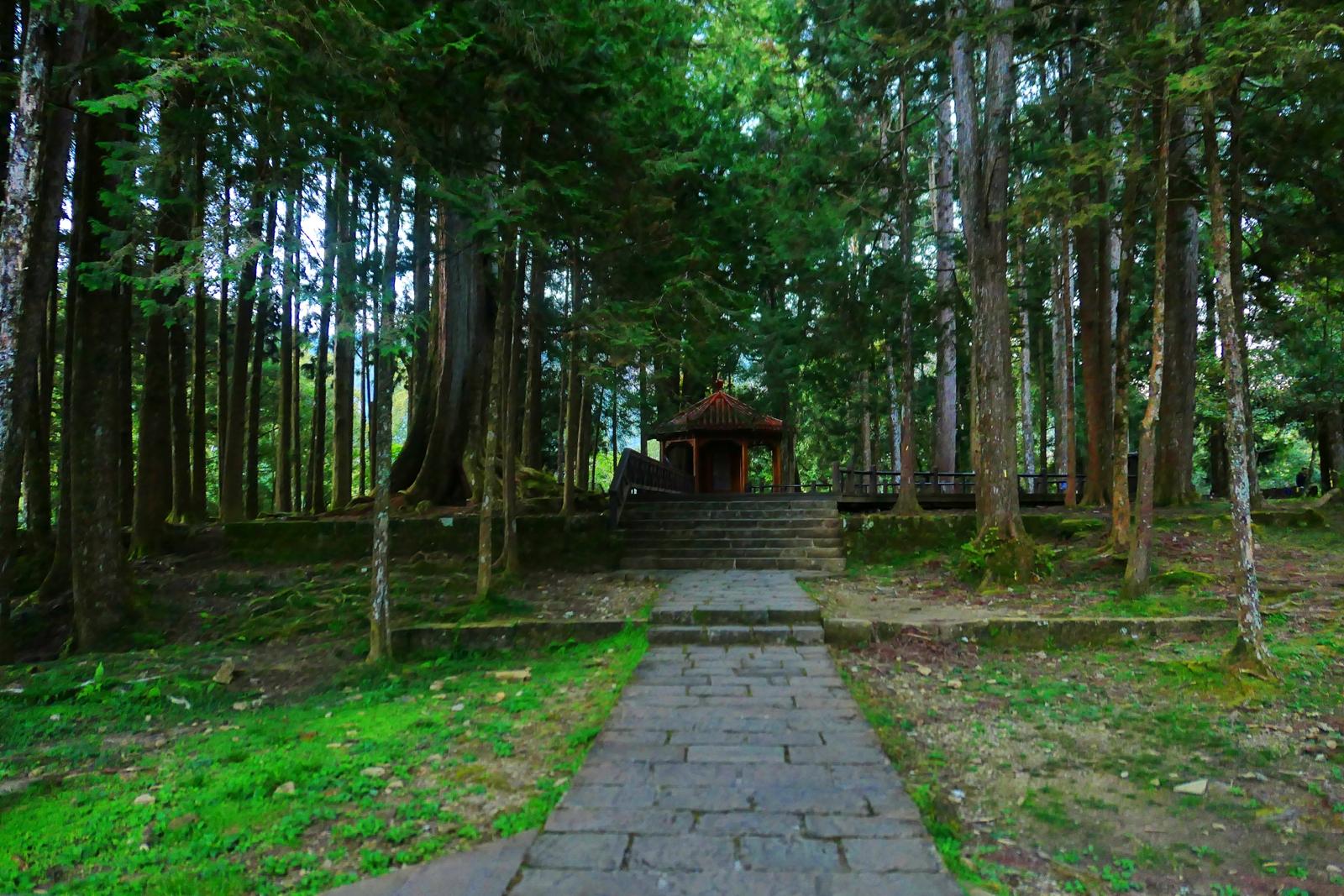 阿里山神社遺址 | ありさんじんじゃ | 歷史的眼淚 | 嘉義 | 臺灣 | 巡日旅行攝