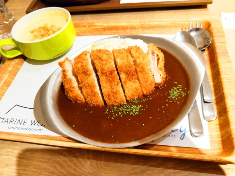 Colorful Japan | 日本豬排咖哩套餐 | Japanese foods | RoundtripJp