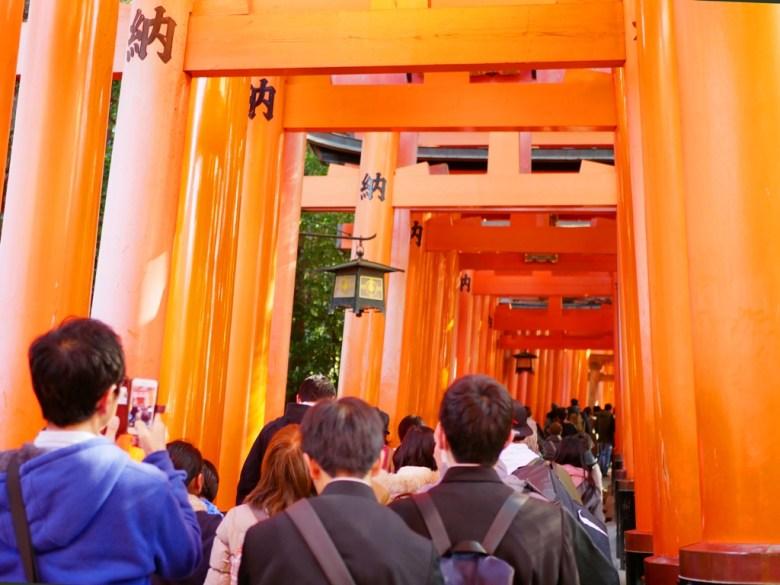 多彩日本 | 京都府 | 伏見稻荷大社 | 日本 | 巡日旅行攝